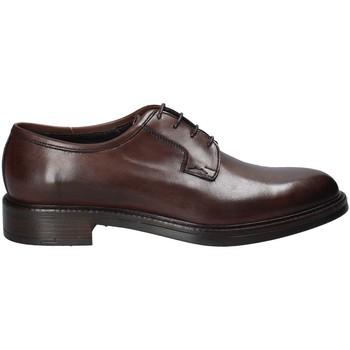 Čevlji  Moški Čevlji Derby Rogers 750_2 Rjav