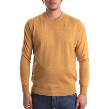 Oblačila Moški Puloverji Navigare NV1100530 Rumena