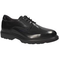 Čevlji  Moški Čevlji Derby Exton 1680 Črna