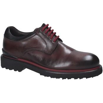 Čevlji  Moški Čevlji Derby Exton 940 Rjav
