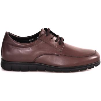 Čevlji  Moški Nizke superge Soldini 20583 P Rjav