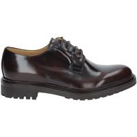 Čevlji  Moški Čevlji Derby Rogers 122A Rjav