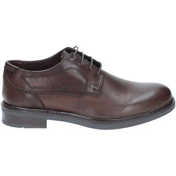 Čevlji  Moški Čevlji Derby Rogers 2027 Rjav