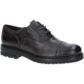 Čevlji  Moški Čevlji Derby Exton 692 Rjav