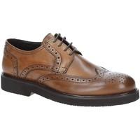 Čevlji  Moški Čevlji Derby Exton 5446 Rjav