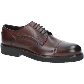 Čevlji  Moški Čevlji Derby Exton 5413 Rjav