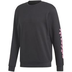 Oblačila Moški Puloverji adidas Originals DV2037 Črna