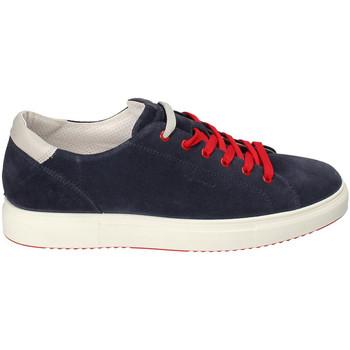 Čevlji  Moški Nizke superge IgI&CO 3132711 Modra
