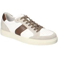 Čevlji  Moški Nizke superge IgI&CO 3132922 Biely