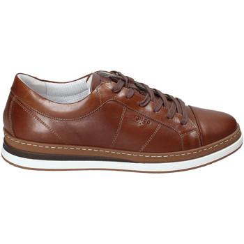 Čevlji  Moški Nizke superge IgI&CO 3138122 Rjav