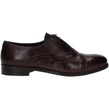 Čevlji  Moški Čevlji Derby Rogers T0001 Rjav