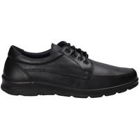 Čevlji  Moški Nizke superge Pitillos 4004 Črna