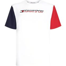 Oblačila Moški Majice s kratkimi rokavi Tommy Hilfiger S20S200103 Biely