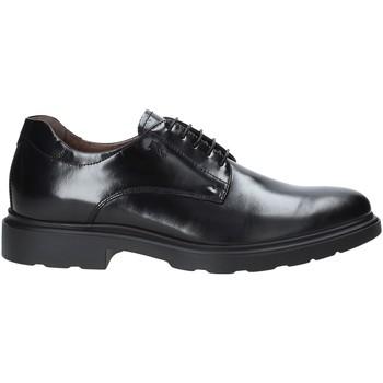 Čevlji  Moški Čevlji Derby Nero Giardini A901141U Črna