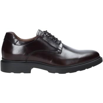 Čevlji  Moški Čevlji Derby Nero Giardini A901141U Rdeča