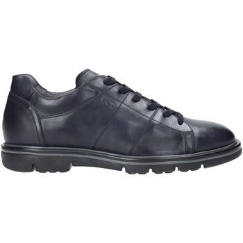Čevlji  Moški Nizke superge Nero Giardini A901160U Modra