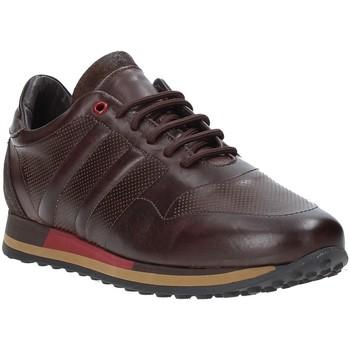 Čevlji  Moški Nizke superge Exton 246 Rjav