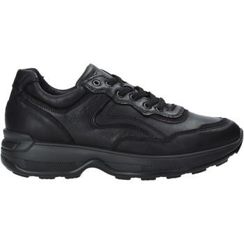 Čevlji  Moški Nizke superge IgI&CO 4114300 Črna