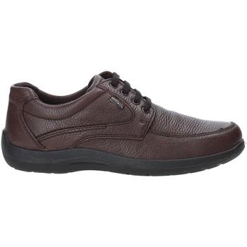 Čevlji  Moški Nizke superge Enval 4233511 Rjav