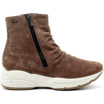 Čevlji  Ženske Gležnjarji IgI&CO 4148311 Rjav