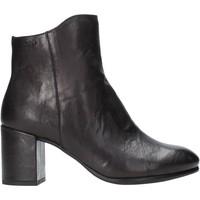 Čevlji  Ženske Gležnjarji IgI&CO 4189700 Črna