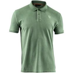 Oblačila Moški Polo majice kratki rokavi Lumberjack CM45940 007 516 Zelena