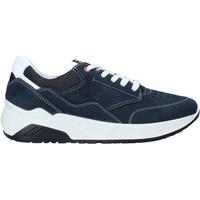 Čevlji  Moški Nizke superge IgI&CO 5132033 Modra