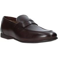 Čevlji  Moški Mokasini Rogers CAR01 Rjav