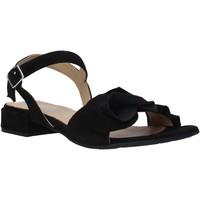 Čevlji  Ženske Sandali & Odprti čevlji IgI&CO 5188400 Črna