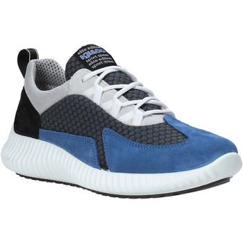 Čevlji  Moški Nizke superge IgI&CO 5123611 Modra