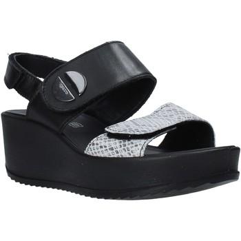 Čevlji  Ženske Sandali & Odprti čevlji IgI&CO 5178200 Črna