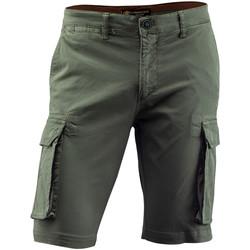 Oblačila Moški Kratke hlače & Bermuda Lumberjack CM80747 002 602 Zelena