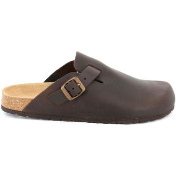 Čevlji  Moški Cokli Grunland CB7034 Rjav