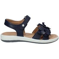 Čevlji  Otroci Sandali & Odprti čevlji Naturino 0502549-02-0C02 Modra