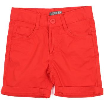 Oblačila Otroci Kratke hlače & Bermuda Losan 015-9655AL Rdeča