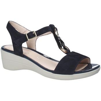 Čevlji  Ženske Sandali & Odprti čevlji Stonefly 110216 Modra
