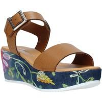 Čevlji  Ženske Sandali & Odprti čevlji Grace Shoes 02 Rjav