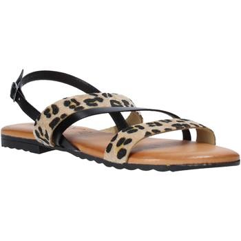 Čevlji  Ženske Sandali & Odprti čevlji Jeiday JUNGLA-SALLY Črna
