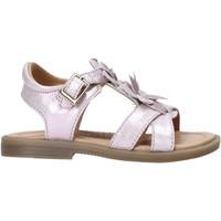 Čevlji  Deklice Sandali & Odprti čevlji Grunland PS0062 Roza