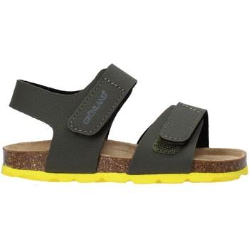 Čevlji  Otroci Sandali & Odprti čevlji Grunland SB0094 Zelena
