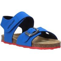 Čevlji  Otroci Sandali & Odprti čevlji Grunland SB0372 Modra
