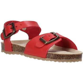 Čevlji  Otroci Sandali & Odprti čevlji Grunland SB1551 Rdeča