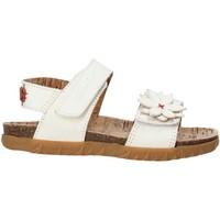 Čevlji  Deklice Sandali & Odprti čevlji Grunland SB1564 Biely