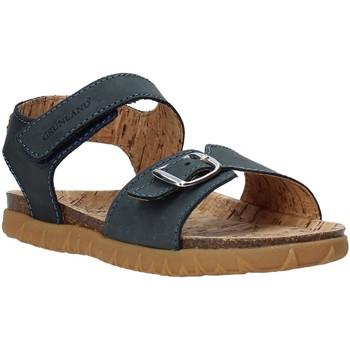 Čevlji  Otroci Sandali & Odprti čevlji Grunland SB1565 Modra