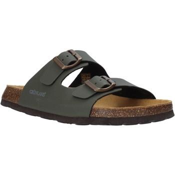 Čevlji  Moški Natikači Grunland CB3012 Zelena