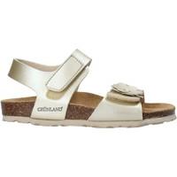 Čevlji  Deklice Sandali & Odprti čevlji Grunland SB1250 Drugi