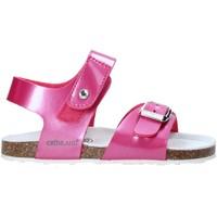 Čevlji  Otroci Sandali & Odprti čevlji Grunland SB0375 Roza