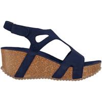 Čevlji  Ženske Sandali & Odprti čevlji Docksteps DSE106243 Modra