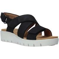 Čevlji  Ženske Sandali & Odprti čevlji Clarks 26140238 Črna