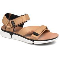 Čevlji  Moški Sandali & Odprti čevlji Clarks 26141049 Rjav
